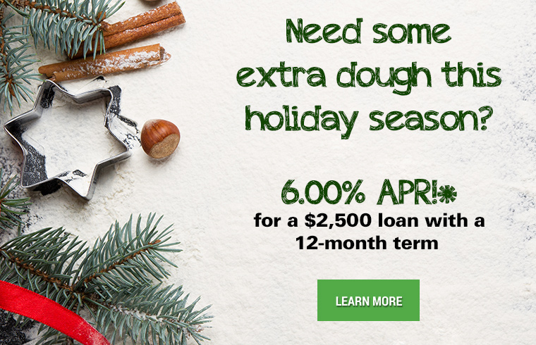 Need some extra dough this holiday season? 6.00% APR for a $2,500 loan with a 12-month term