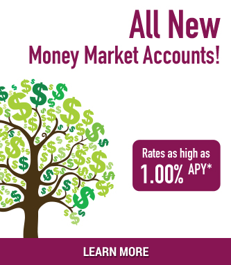 All New Money Market Accounts Rates as high as 1.00% APY* Learn More